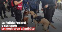 """La Policía Federal expuso su trabajo """"a puertas abiertas"""" y mostró a sus perros especializados"""